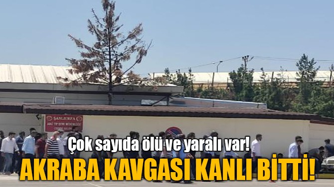 AKRABA KAVGASI KANLI BİTTİ!