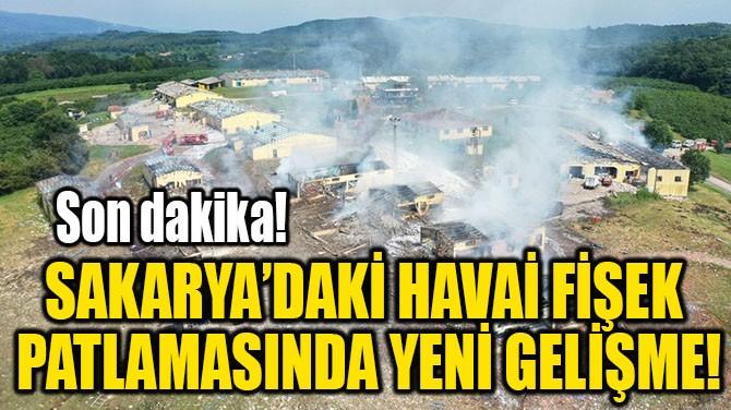 SAKARYA'DAKİ HAVAİ FİŞEK  PATLAMASINDA YENİ GELİŞME!