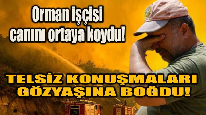 ORMAN İŞÇİSİ CANINI ORTAYA KOYDU!