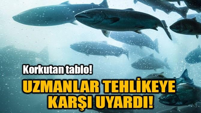 UZMANLAR TEHLİKEYE KARŞI UYARDI!