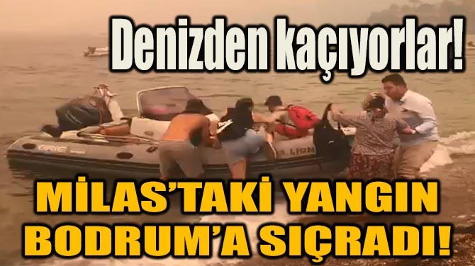 MİLAS'TAKİ YANGIN BODRUM'A SIÇRADI!