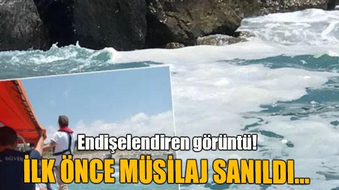 İLK ÖNCE MÜSİLAJ SANILDI...