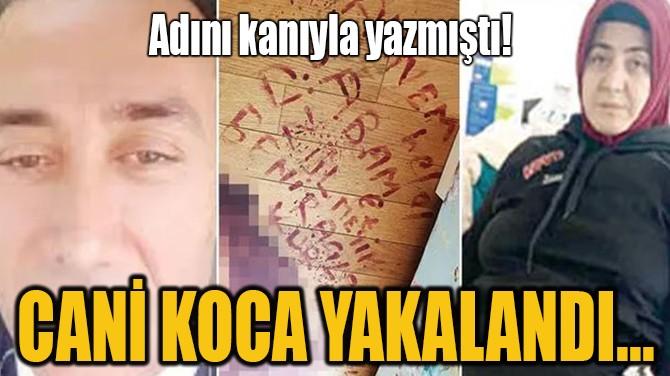 CANİ KOCA YAKALANDI...