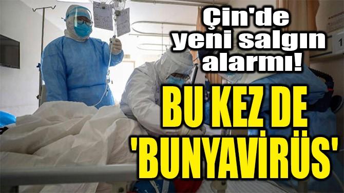 BU KEZ DE  'BUNYAVİRÜS'