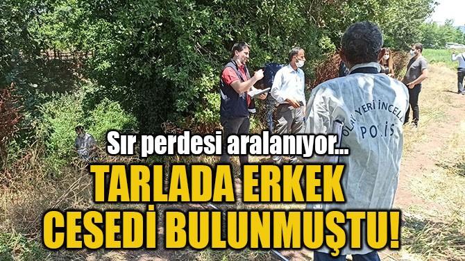 TARLADA ERKEK CESEDİ BULUNMUŞTU!