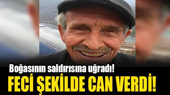FECİ ŞEKİLDE CAN VERDİ!