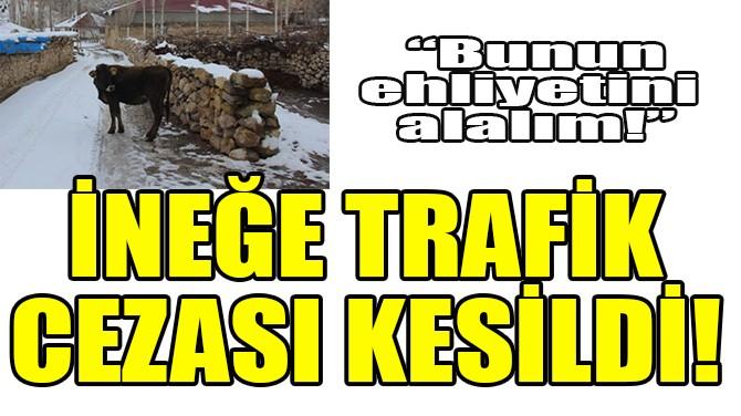 İNEĞE TRAFİK CEZASI KESİLDİ!