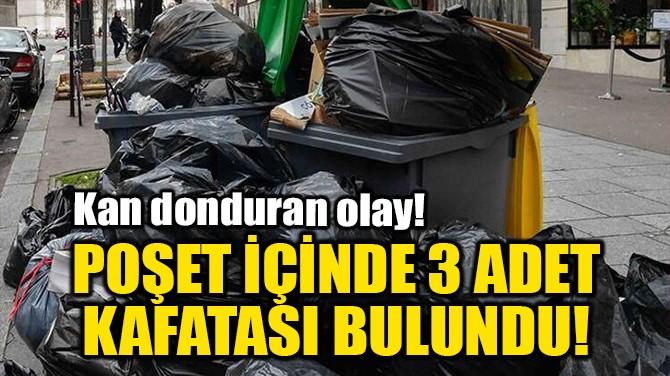 POŞET İÇİNDE 3 ADET KAFATASI BULUNDU!