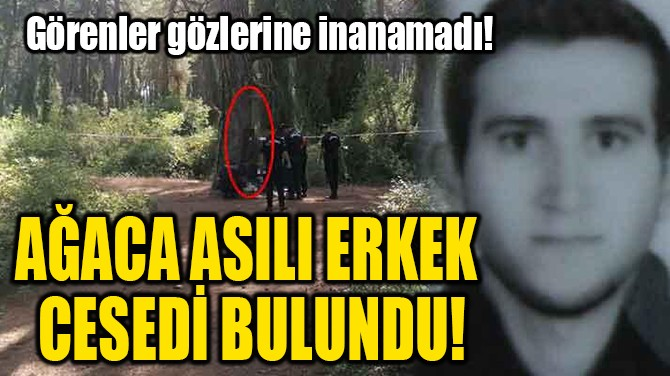 AĞACA ASILI ERKEK CESEDİ BULUNDU!
