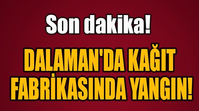 DALAMAN'DA KAĞIT  FABRİKASINDA YANGIN!