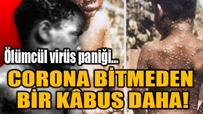 CORONA BİTMEDEN  BİR KÂBUS DAHA!