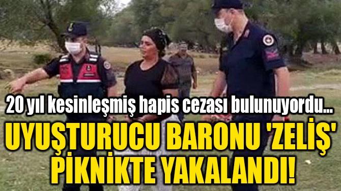 UYUŞTURUCU BARONU 'ZELİŞ'  PİKNİKTE YAKALANDI!
