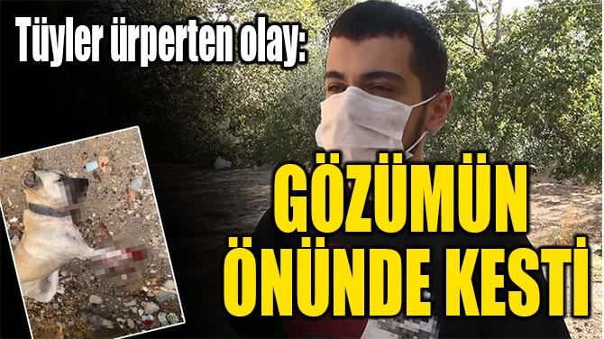 """""""GÖZÜMÜN  ÖNÜNDE KESTİ"""""""
