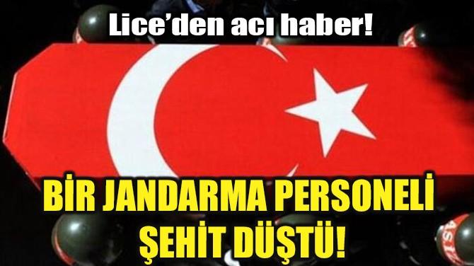 BİR JANDARMA PERSONELİ ŞEHİT DÜŞTÜ!