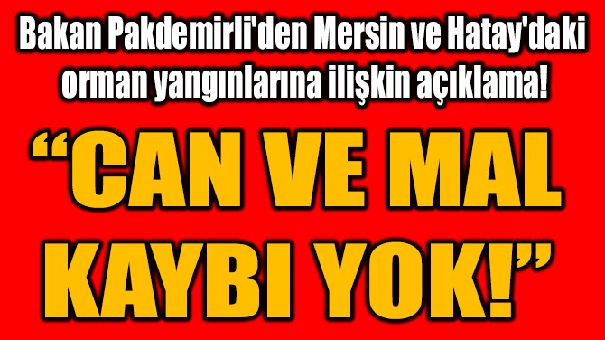 """""""CAN VE MAL KAYBI YOK!"""""""