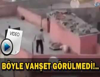 KÖPEKLERİNİ KEMERLE DÖVEN ŞAHIS GÖZALTINA ALINDI!..