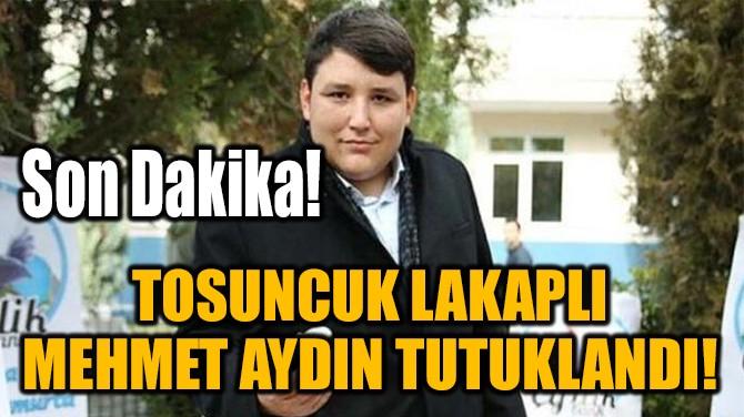 'TOSUNCUK' LAKAPLI MEHMET AYDIN TUTUKLANDI!