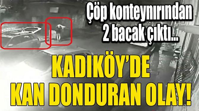 KADIKÖY'DE KAN DONDURAN OLAY!