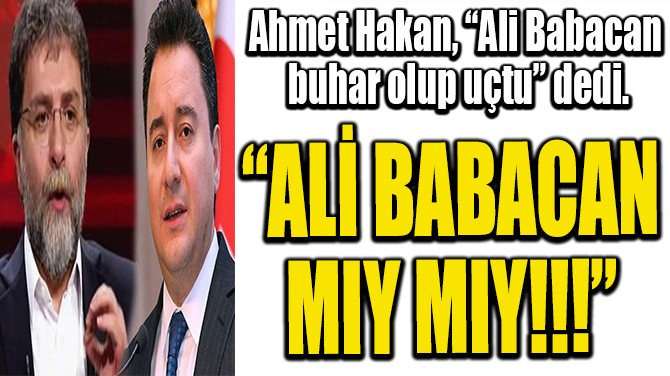 """ALİ BABACAN MIY MIY!!!"""