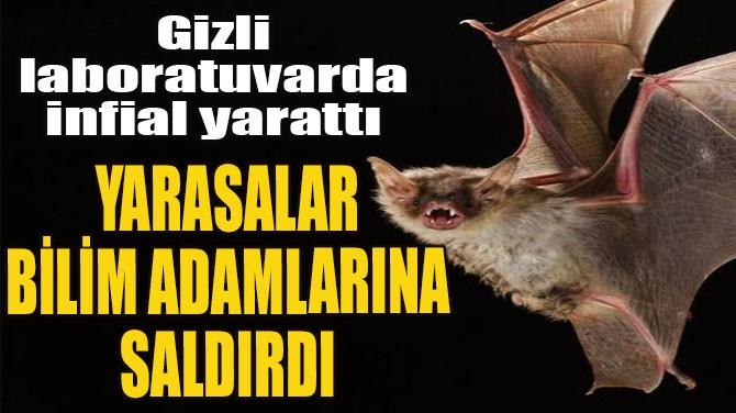 YARASALAR BİLİM ADAMLARINA SALDIRDI