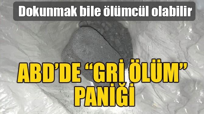 """ABD'DE """"GRİ ÖLÜM"""" PANİĞİ"""