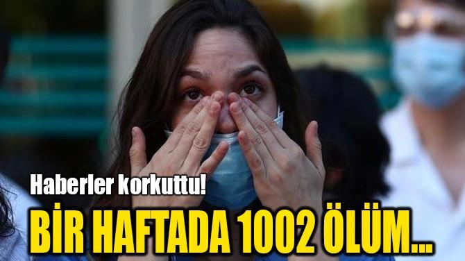 BİR HAFTADA 1002 ÖLÜM...