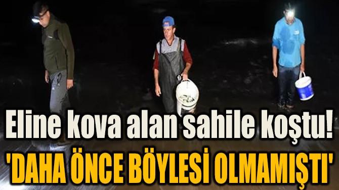 ELİNE KOVA ALAN SAHİLE KOŞTU! 'DAHA ÖNCE BÖYLESİ OLMAMIŞTI'