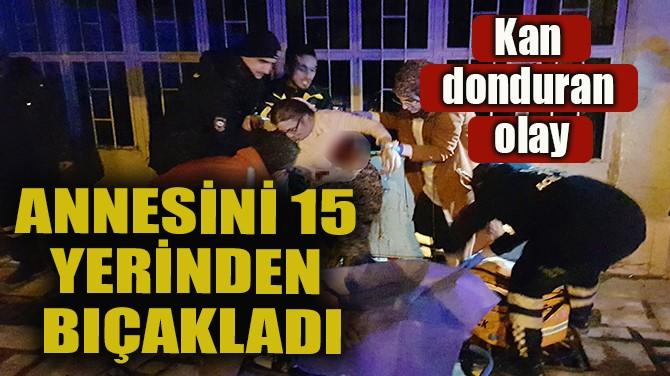 ANNESİNİ 15 YERİNDEN BIÇAKLADI!