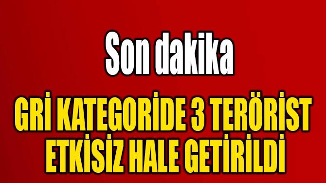 GRİ KATEGORİDE 3 TERÖRİST  ETKİSİZ HALE GETİRİLDİ