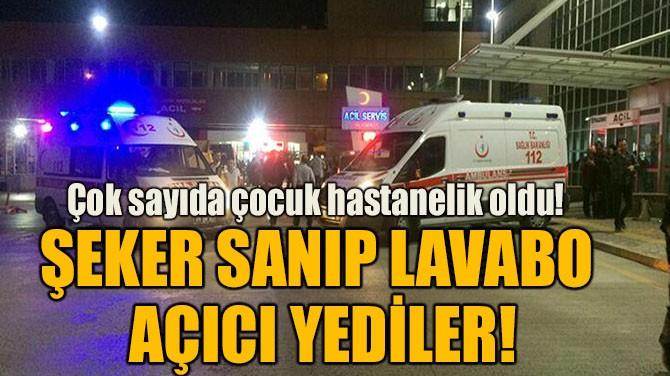 ŞEKER SANIP LAVABO AÇICI YEDİLER!