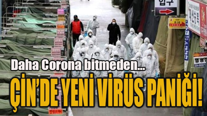ÇİN'DE YENİ VİRÜS PANİĞİ!