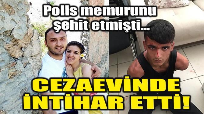 POLİSİ ŞEHİT EDEN ŞAHIS İNTİHAR ETTİ!
