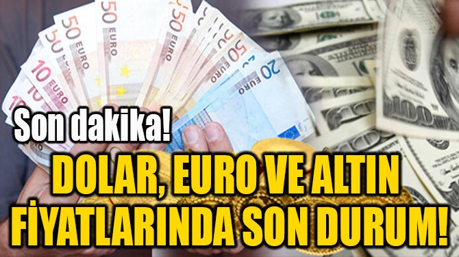 DOLAR, EURO VE ALTIN  FİYATLARINDA SON DURUM!