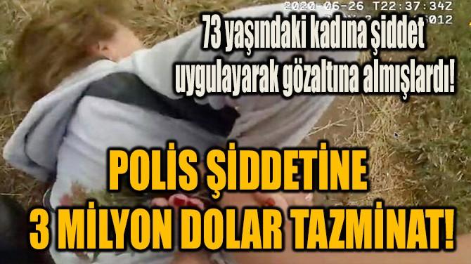 POLİS ŞİDDETİNE  3 MİLYON DOLAR TAZMİNAT!
