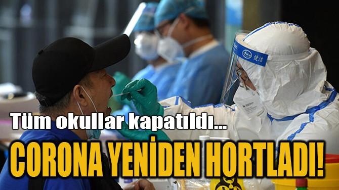 CORONA YENİDEN HORTLADI!