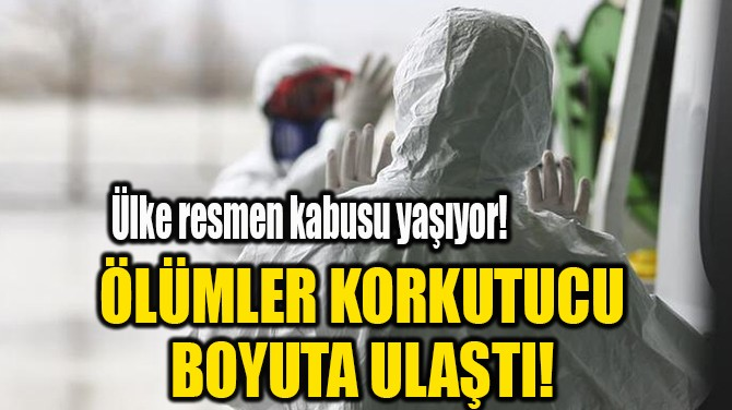 ÖLÜMLER KORKUTUCU BOYUTA ULAŞTI!