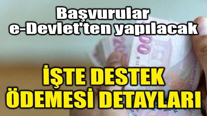 İŞTE DESTEK ÖDEMESİ DETAYLARI!