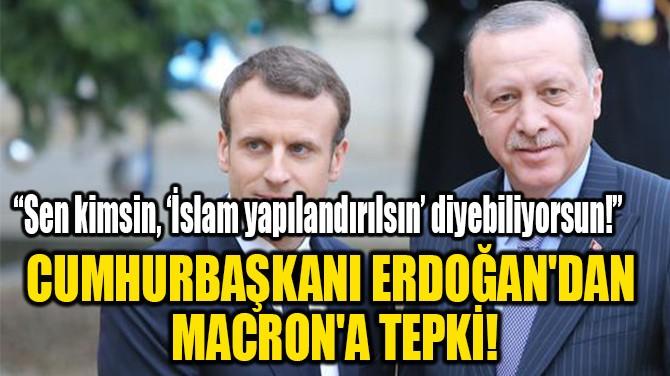 CUMHURBAŞKANI ERDOĞAN'DAN  MACRON'A TEPKİ!