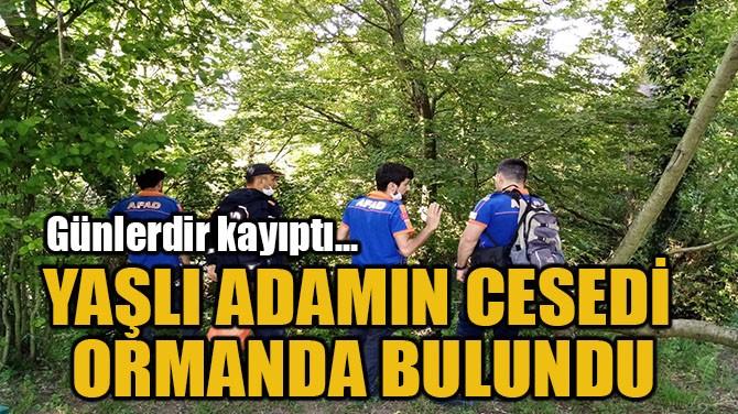 YAŞLI ADAMIN CESEDİ ORMANDA BULUNDU