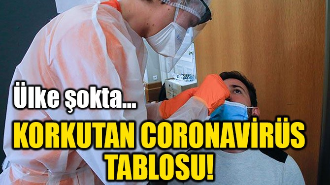 KORKUTAN CORONAVİRÜS TABLOSU!