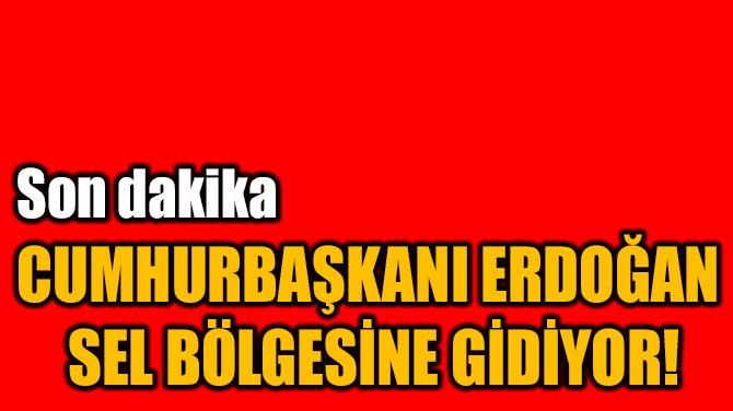 CUMHURBAŞKANI ERDOĞAN  SEL BÖLGESİNE GİDİYOR!