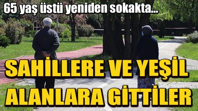İSTANBUL'DA 65 YAŞ VE ÜSTÜ YENİDEN SOKAKTA!