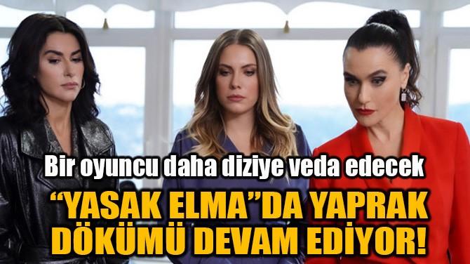 """""""YASAK ELMA""""DA YAPRAK DÖKÜMÜ DEVAM EDİYOR!"""