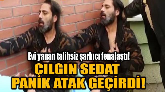 ÇILGIN SEDAT  PANİK ATAK GEÇİRDİ!