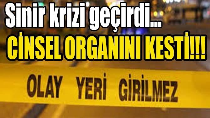 CİNSEL ORGANINI KESTİ!!!