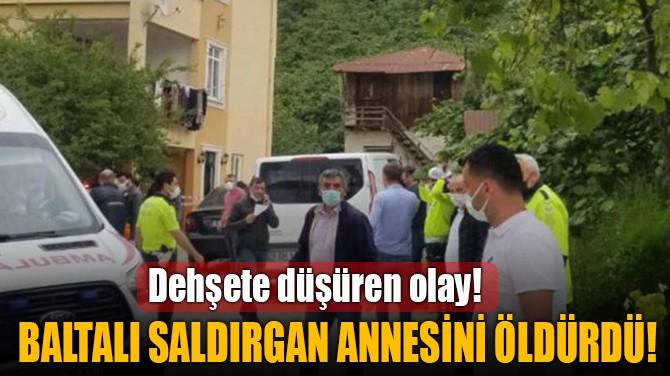 BALTALI SALDIRGAN ANNESİNİ ÖLDÜRDÜ!