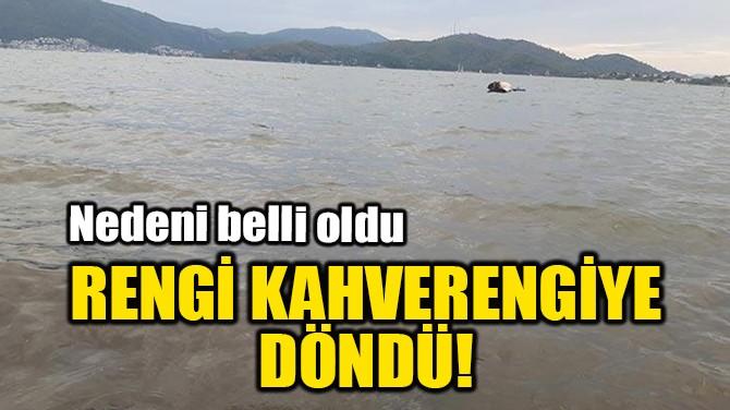 RENGİ KAHVERENGİYE DÖNDÜ!