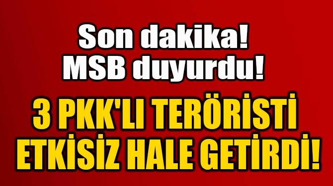 3 PKK'LI TERÖRİSTİ  ETKİSİZ HALE GETİRDİ!