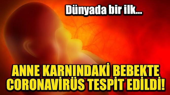 ANNE KARNINDAKİ BEBEKTE CORONAVİRÜS TESPİT EDİLDİ!