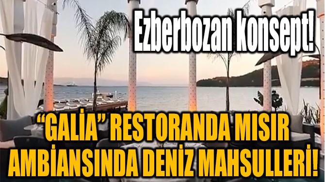 "BODRUM ""GALİA"" RESTORANDA  MISIR AMBİANSINDA DENİZ MAHSULLERİ!"